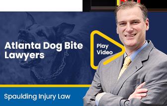 Atlanta Dog Bite Lawyers